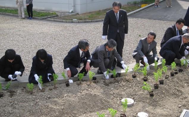 創立110周年記念桔梗植栽式